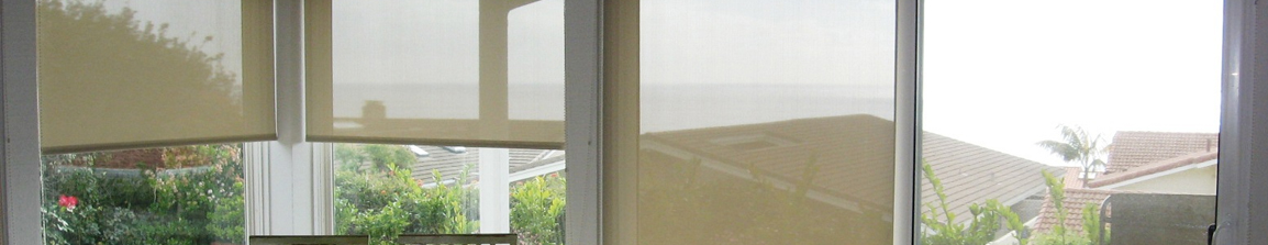 Roller Shades in San Antonio, Boerne, and New Braunfels, Texas (TX) like Designer Lustra and Alustra
